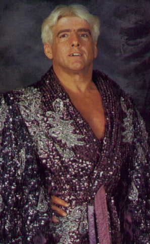 Mattel WWE WCW Ric Flair?