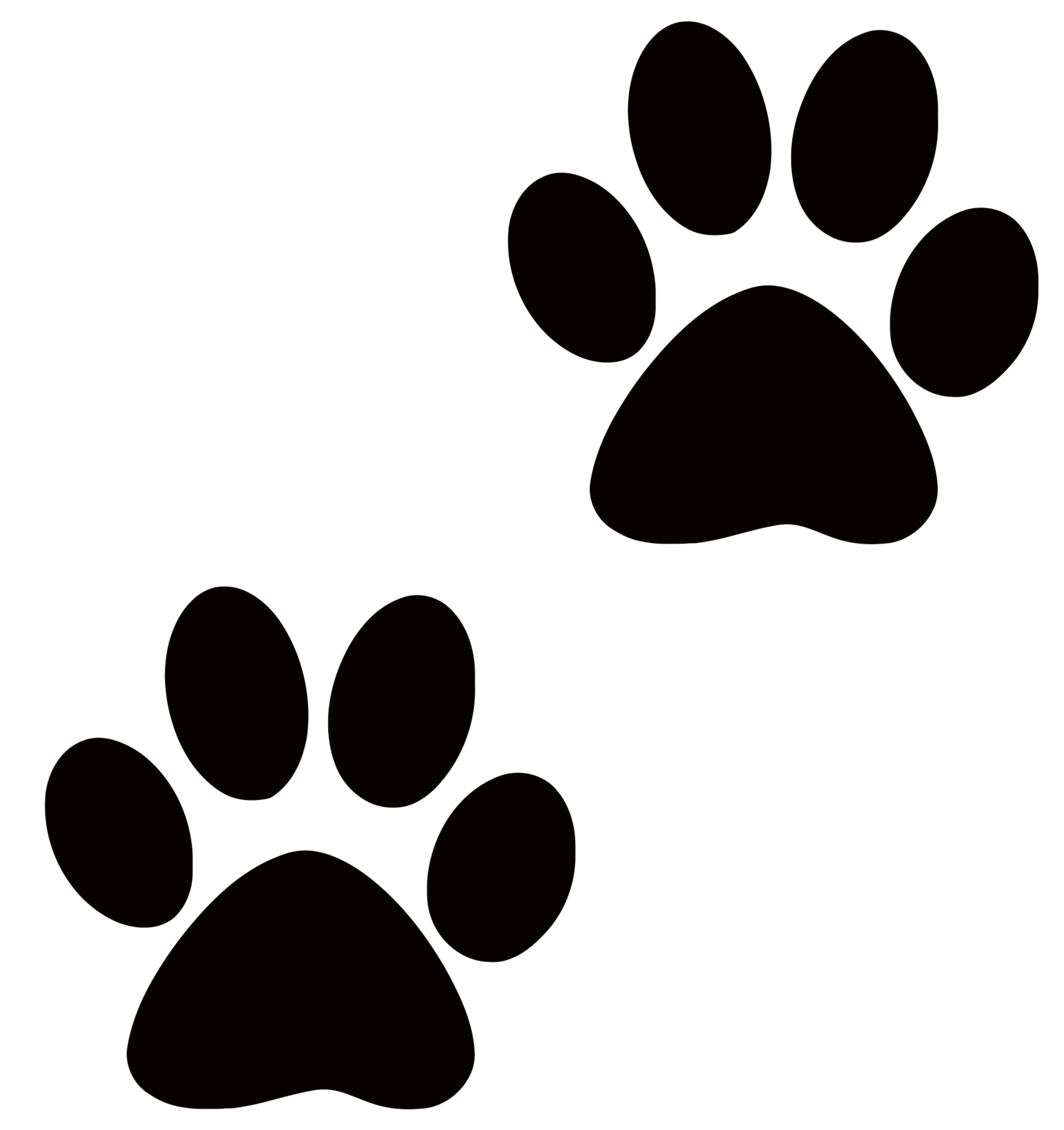 Tiger paw print background - photo#6